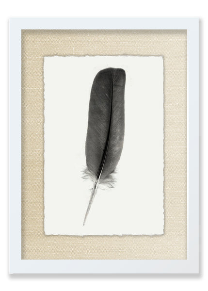 Feather #4