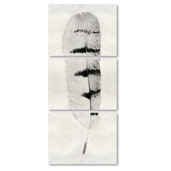 Feather #8 Triptych