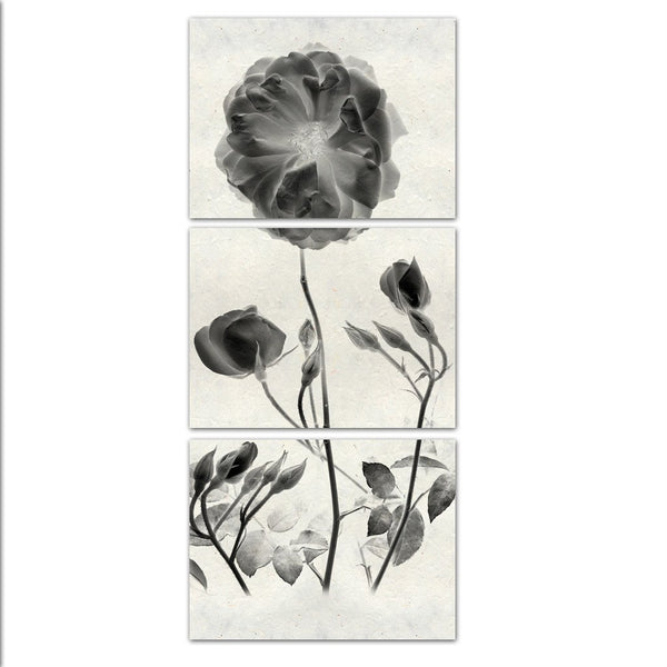 Graphite Rose Triptych