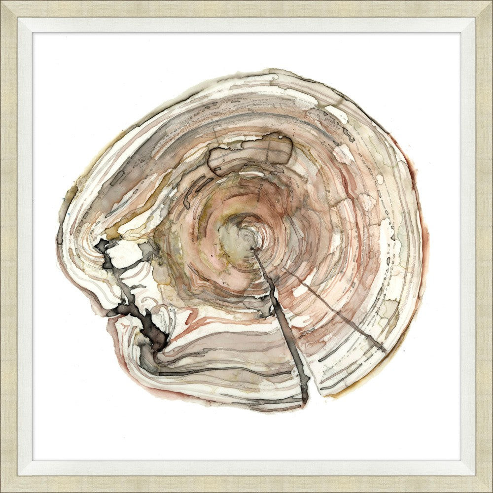 Watercolor Tree Rings #3