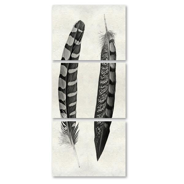 Two Curved Feathers Triptych