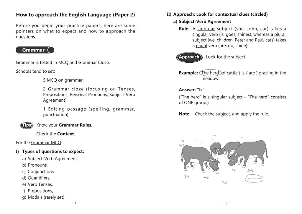 English Mock Exam Papers Primary 2