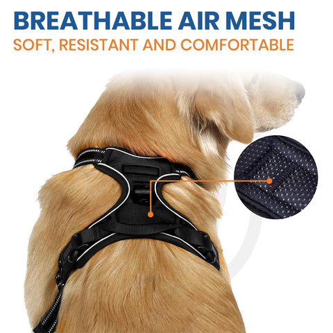Pawsroad No Pull Harness Breathable