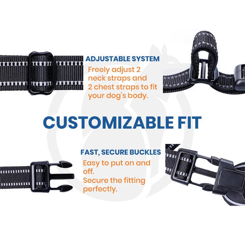 Pawsroad No Pull Harness Custonizable Fit