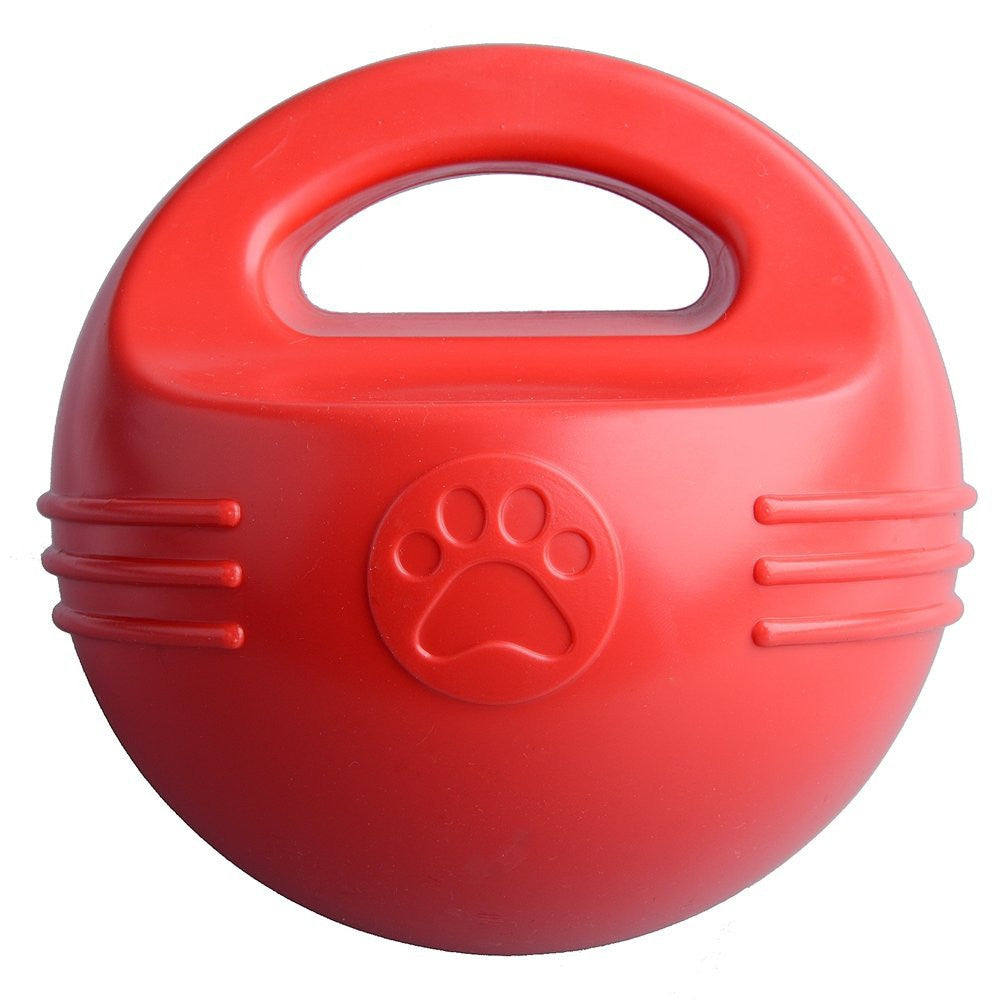 Pawsroad Floating Pool Dog Balls Toy with Handle