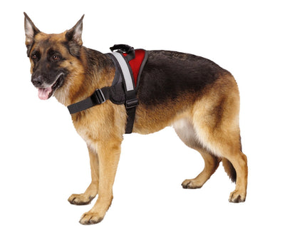 Pawsroad Big Dog Soft Reflective No Pull Harness Red Dog