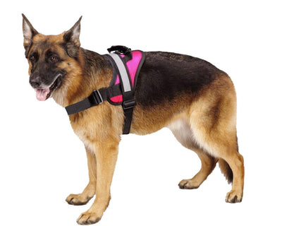 Pawsroad Big Dog Soft Reflective No Pull Harness Pink