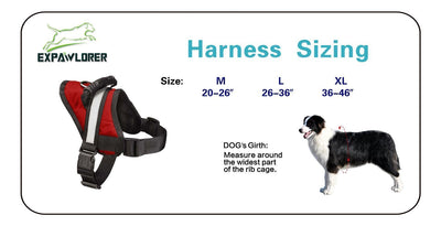 Pawsroad Big Dog Soft Reflective No Pull Harness Size Char