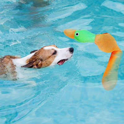 Paswroad Water Toy For Dogs-2 Pcs Squeaky Duck for Pet Training & Chewing