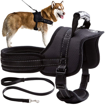 Mihachi Dog Harness with Leash with Handle No Pull No Chock Adjustable Padded Vest Harness for Dogs - Hoverboardmall