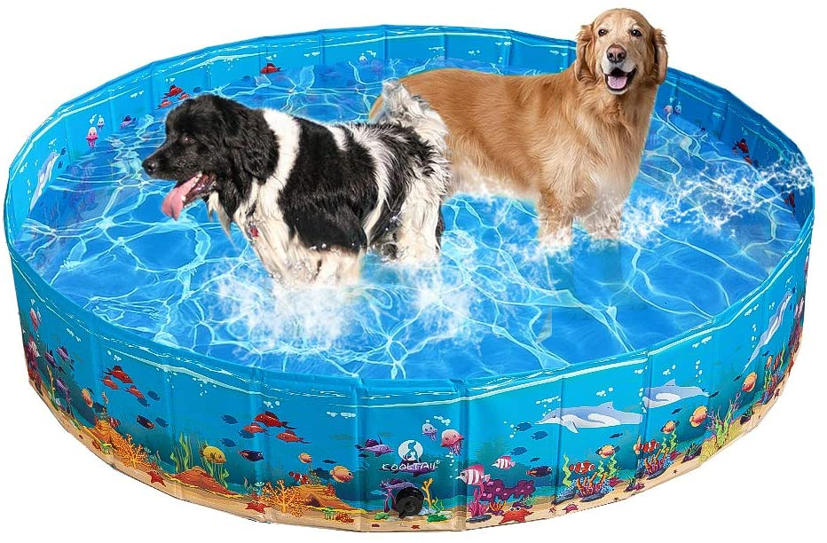 Pawsroad Large Dog Pet Swimming Pool Pawsroad