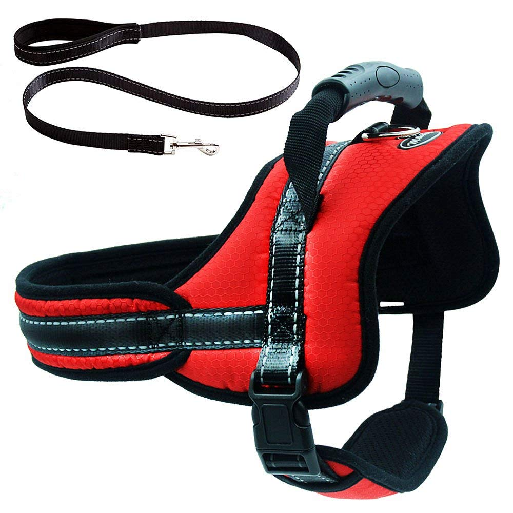 Pawsroad Last No Pull Dog Harness 2019
