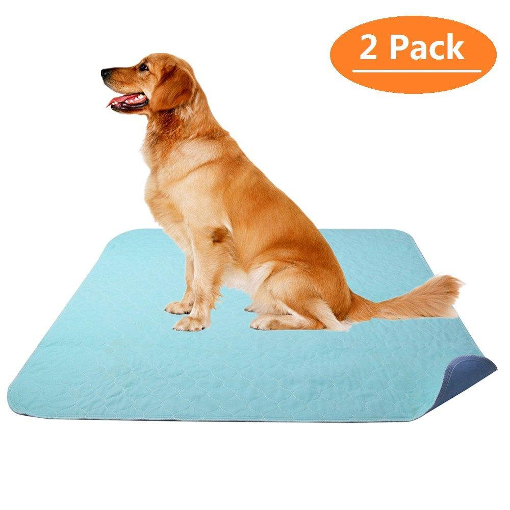 Pawsroad 2 Pack Pet Training and Puppy Pads, Washable and Heavy Duty