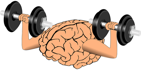 mind-muscle-connection