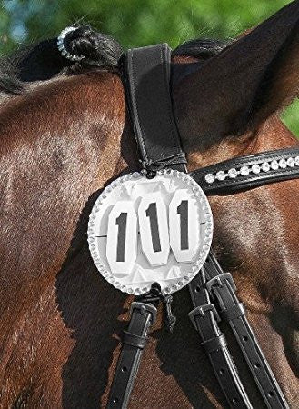Photo of a horse wearing Bling Bridle Number Holder
