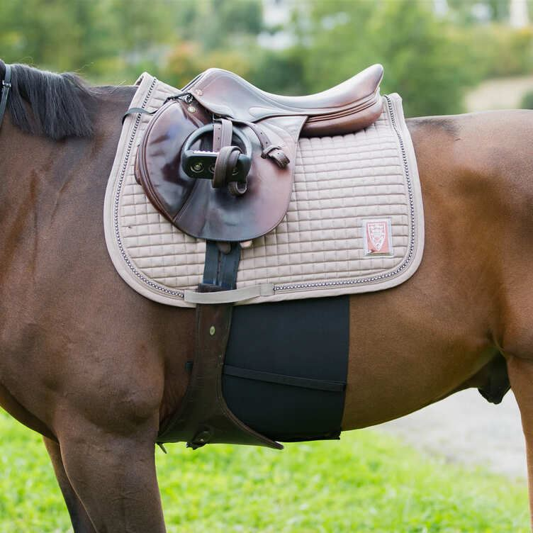Photo of horse wearing Horze Elastic Belly Guard