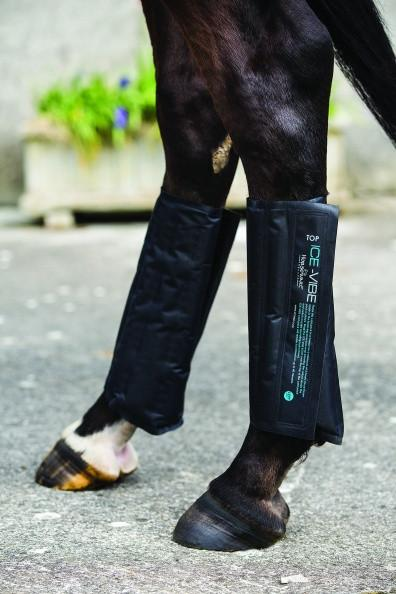Horse wearing Horseware Ice-Vibe Circulation Tendon Boots