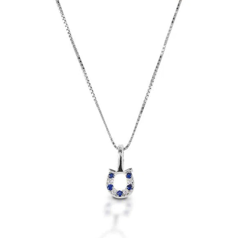 Kelly Herd Sterling Silver Horseshoe Necklace | Blue & Clear