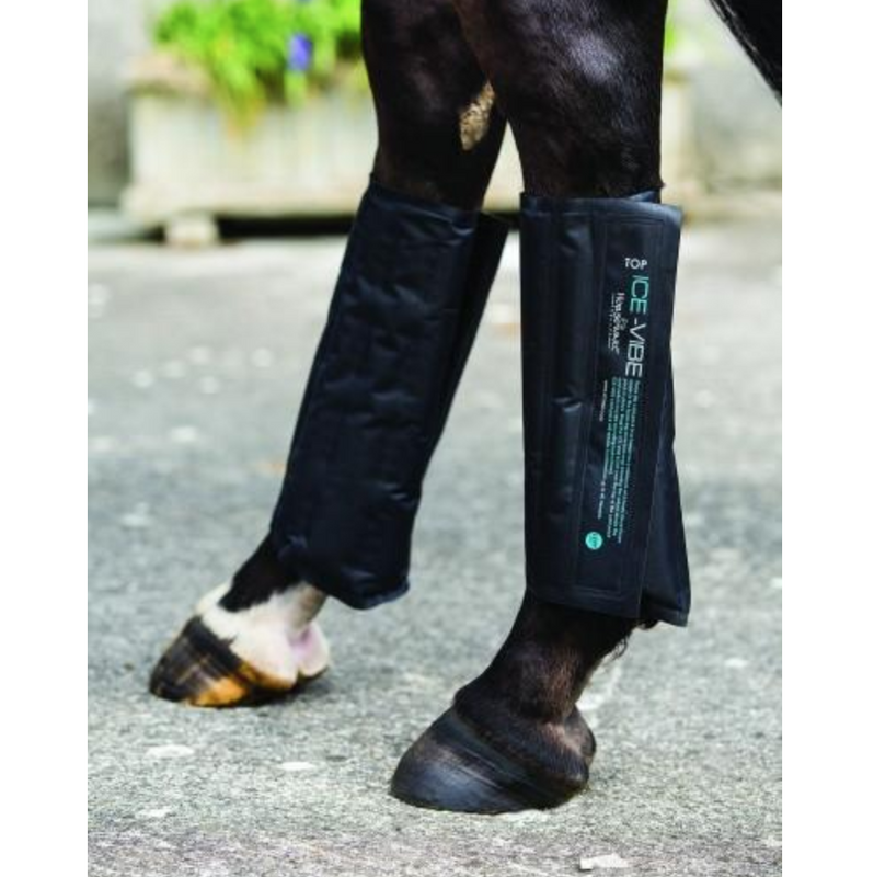 Horse wearing Horseware Ice-Vibe Cold Packs Tendon
