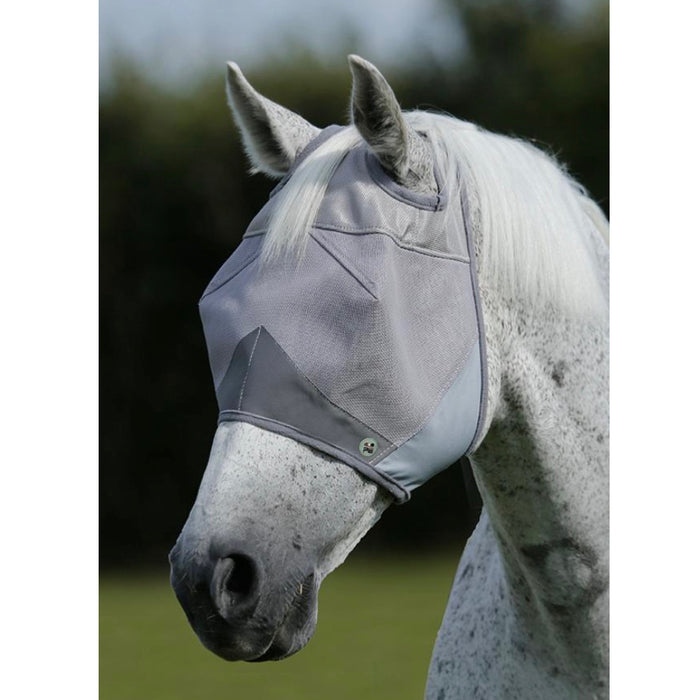 Photo of horse wearing Premier Equine Buster Standard Fly Mask