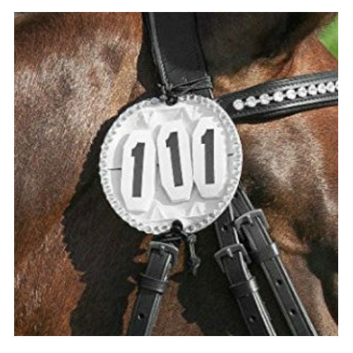 Photo of horse wearing Bling Bridle Number Holder