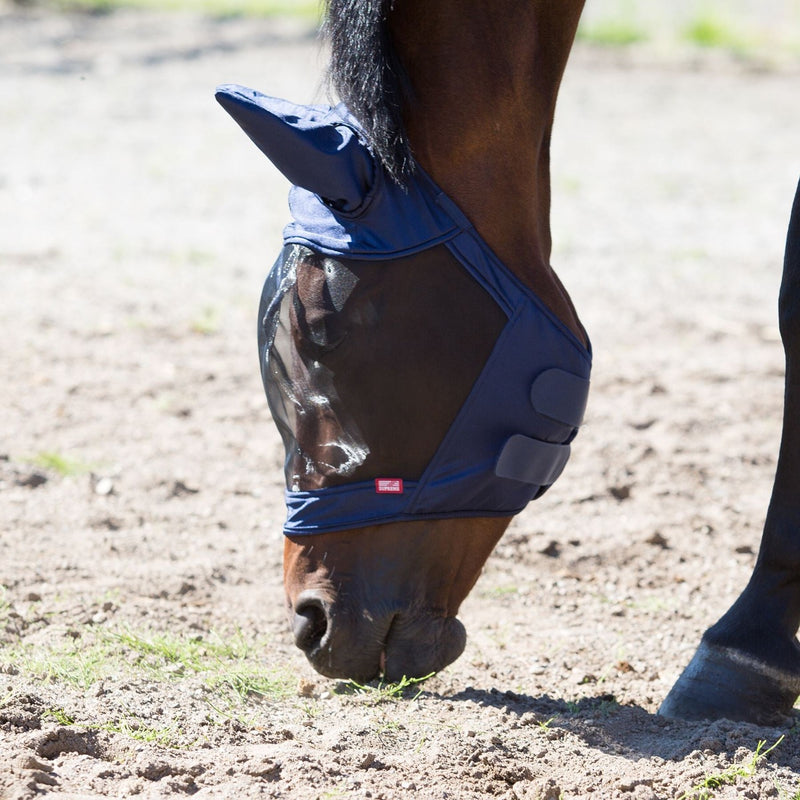 Photo of horse wearing Horze Cayman Fly Mask