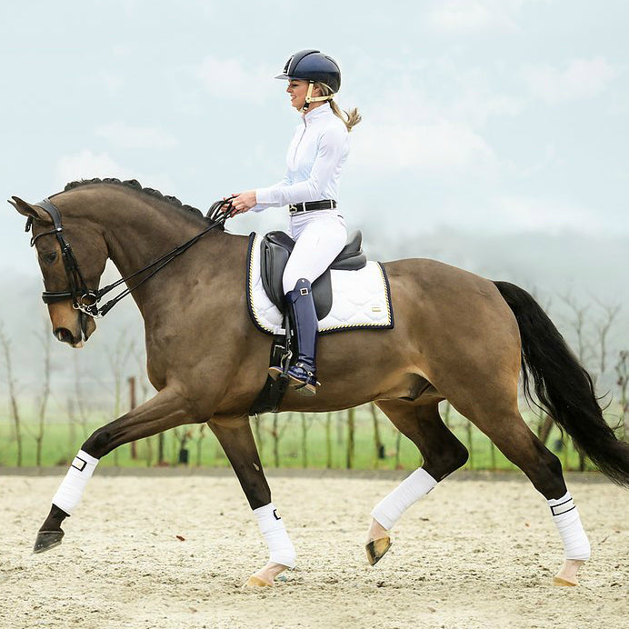 Photo of horse wearing PS of Sweden Monogram Saddle Pad LAP OF HONOR