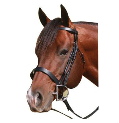 McAlister Flat Cavesson Bridle
