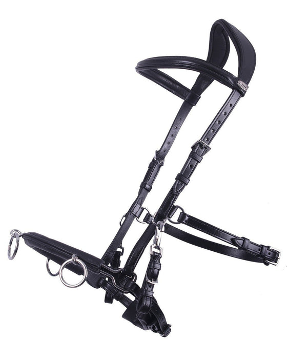 QHP Lunging Cavesson Bridle