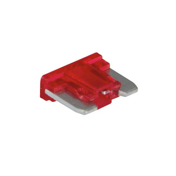 Champion 10Amp Low Profile Mini Blade Fuse (Red) -15Pk | Auto Fuses - Mini Blade-Automotive & Electrical Accessories-Tool Factory