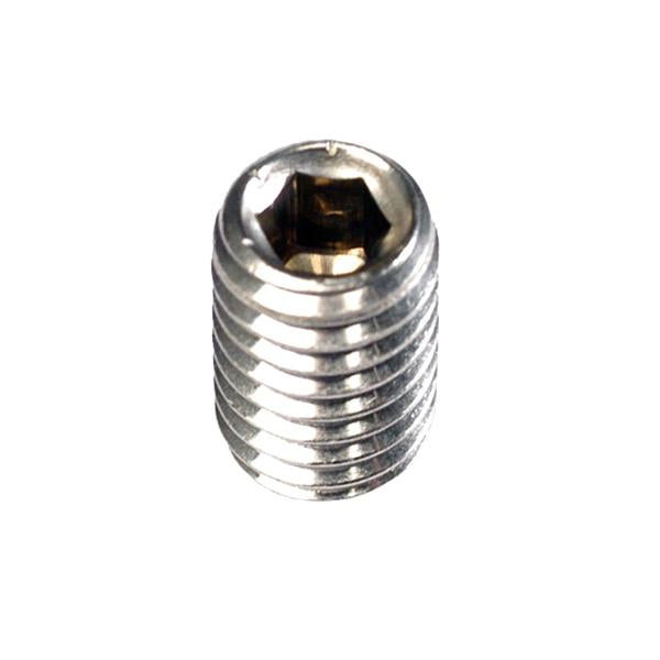 Champion 1/4In X 1/4In Bsw Grub Screw 316/A4 -10Pk | Stainless Steel - Grade 316 Imperial-Fasteners-Tool Factory