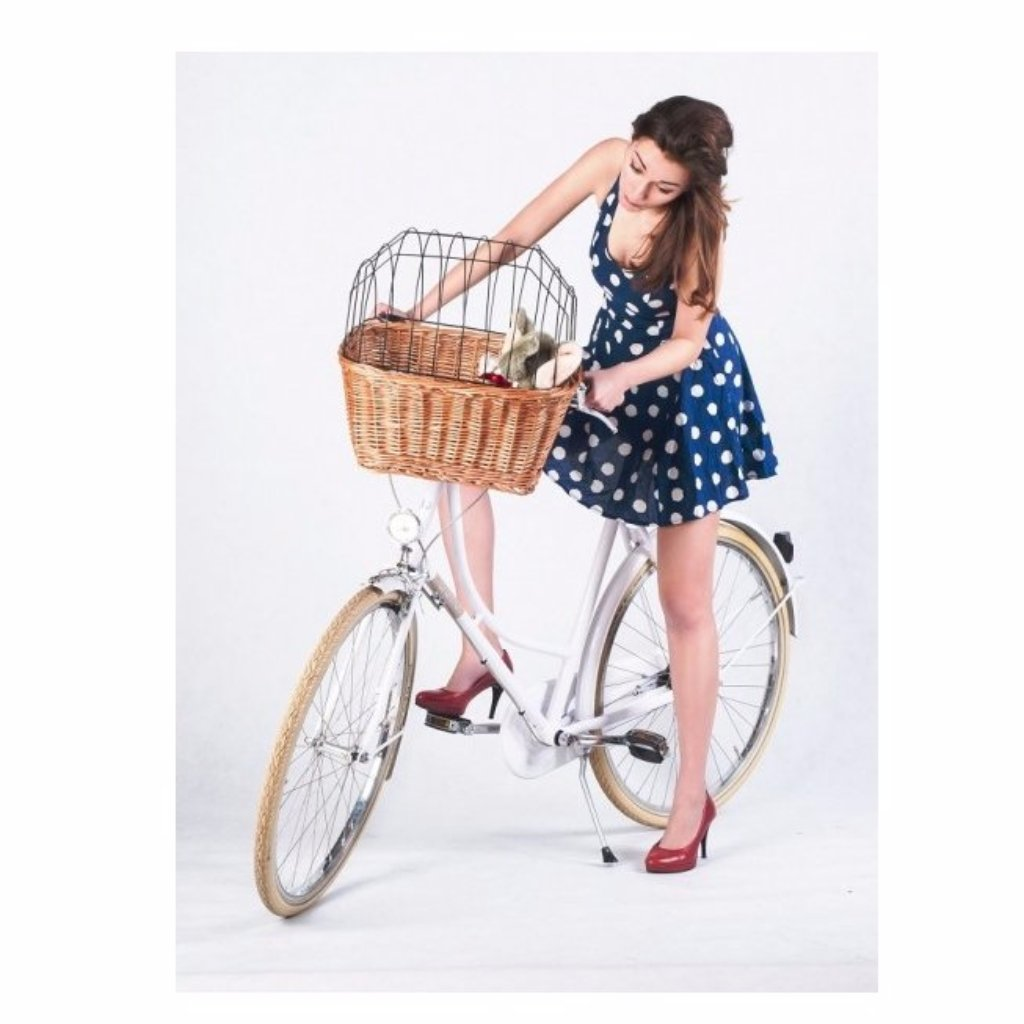 Pet Bike Basket A Perfect Wicker Basket To Transport Your