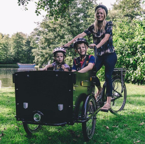 Family electric cargo bike with transparent panorama