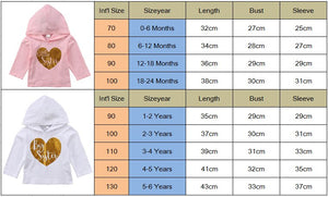 6 Month to 6T Little and Big Sister Hooded Shirts