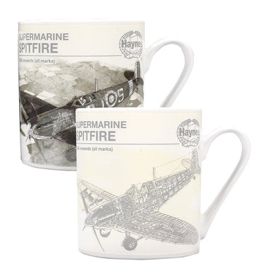 Haynes (Spitfire) Heat Changing Mug