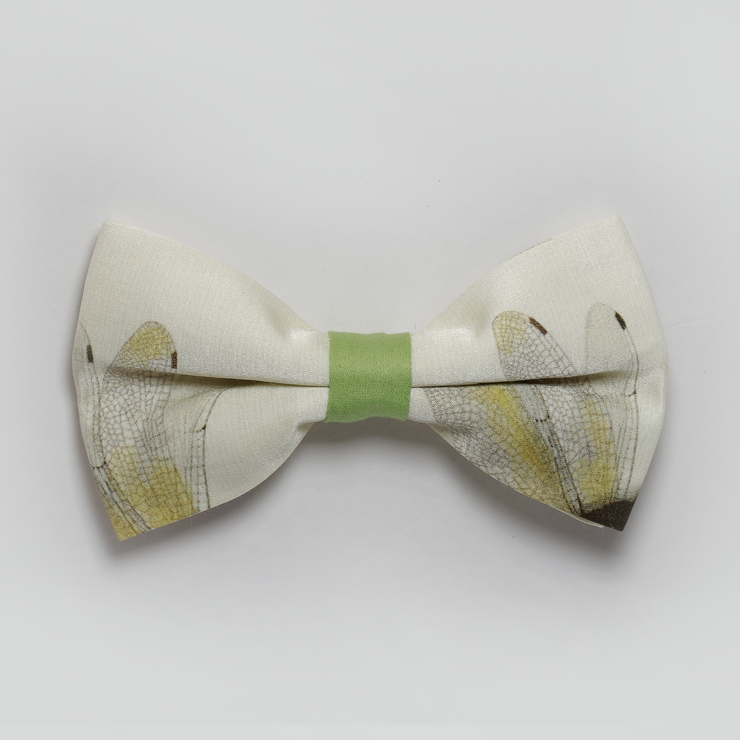 The Dragonfly Bowtie