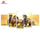 5pc Running Horse  Amazing Canvas Print - My Gift Of Today