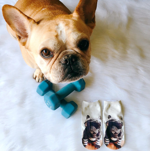 Don't Sweat It Socks - Allthingsfrenchie LLC