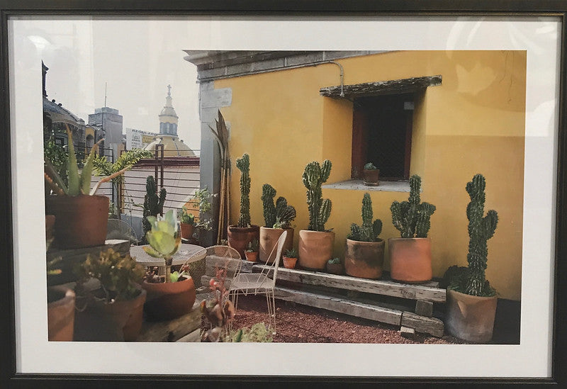 Mexico City: Julie Latcham