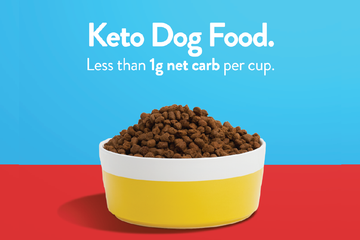Keto Dog Food: How to Feed Your Dog a Keto Diet