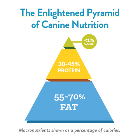 enlightened food pyramid of canine nutrition