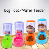 Automatic Dog Food Drink Dispenser