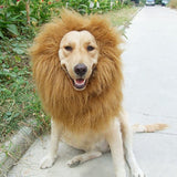 Halloween Clothes Fancy Dress Up Lion Mane Wig For Dogs