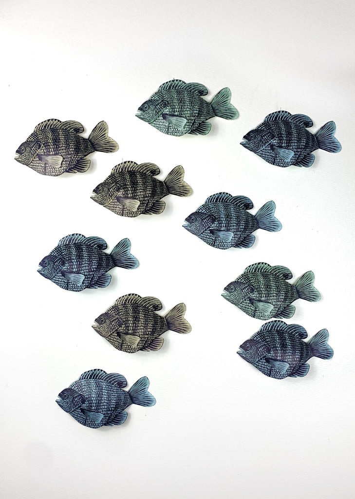 Wall Hanging Bluegill (Left Facing)