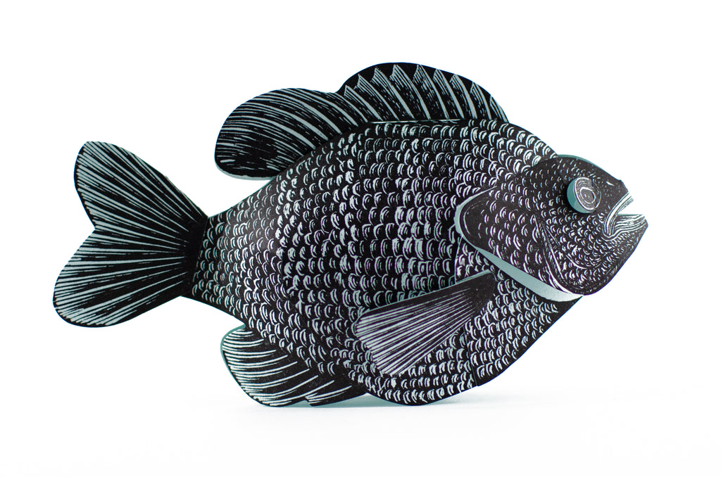 Bluegill Paper Sculpture