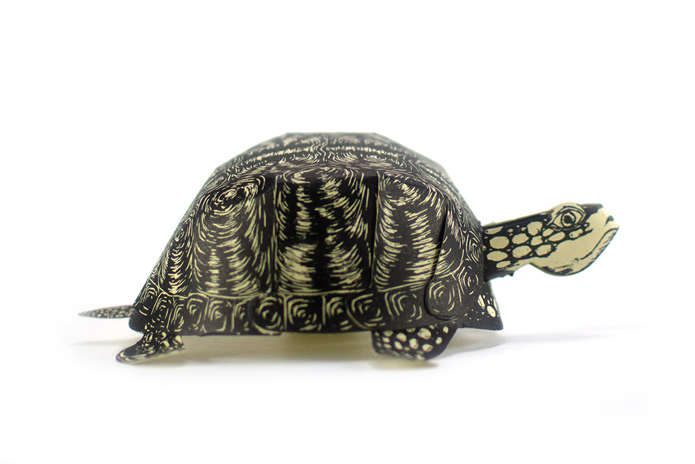A paper sculpture of a turtle, assembled from a kit printed from a hand carved block.