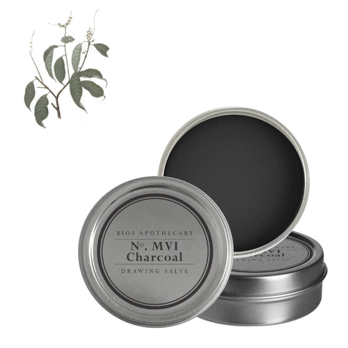 Charcoal Drawing Salve