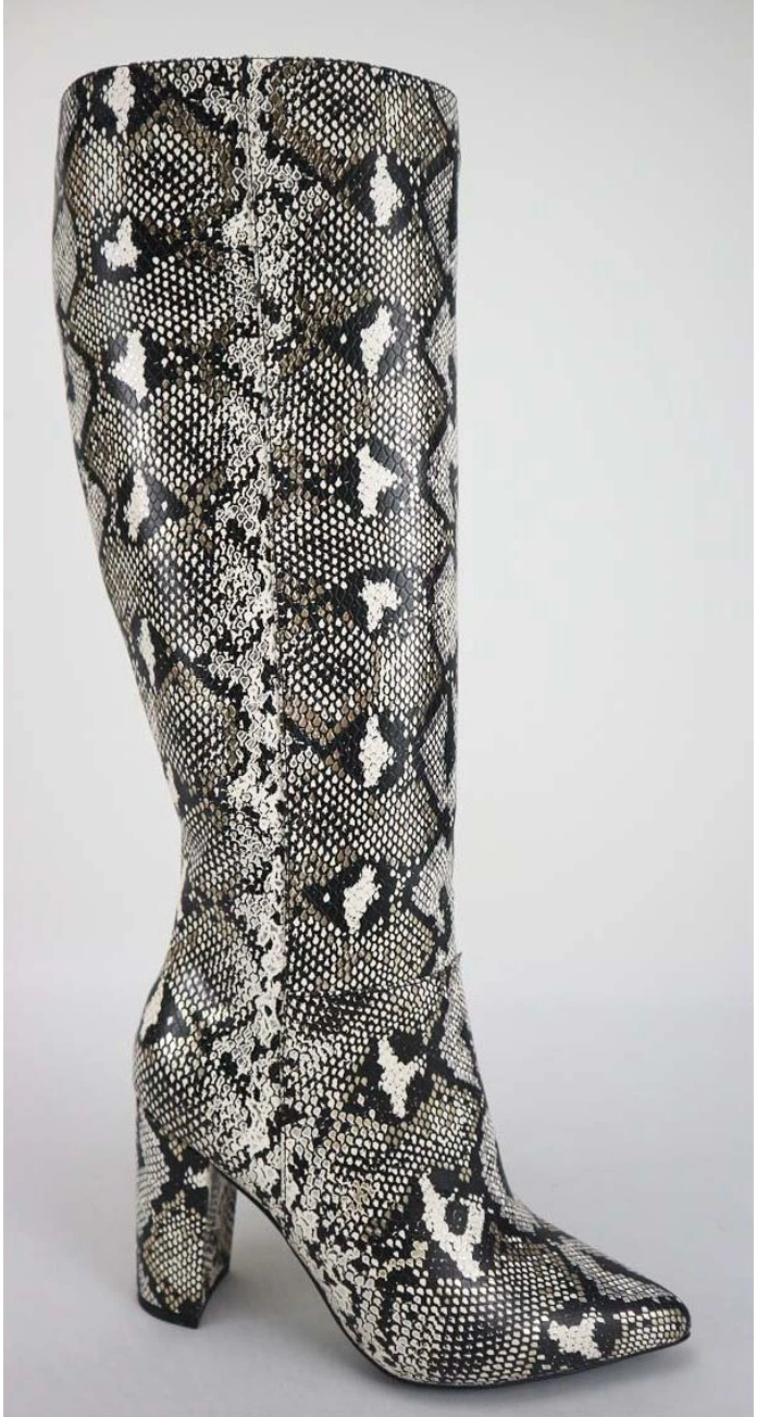 Bellflower-41 Silver Snake Chunky Heel Mid Calf Boots