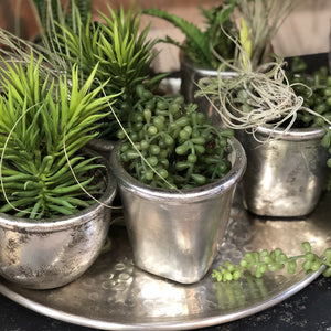 Mixed Shape Rustic Silver Plant Pots (Set of 6)