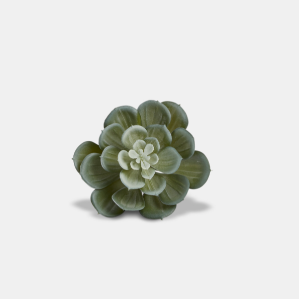 Succulent Napkin Rings - Set of Four